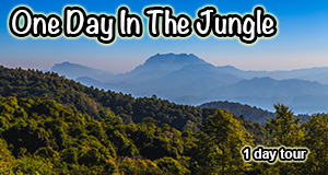 One Day Chiang Mai Trekking